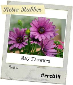 retrorubber14mayflowers
