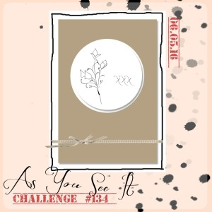 AYSIChallenge134-1024x1024